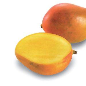 04 436 Mango Gelatoa