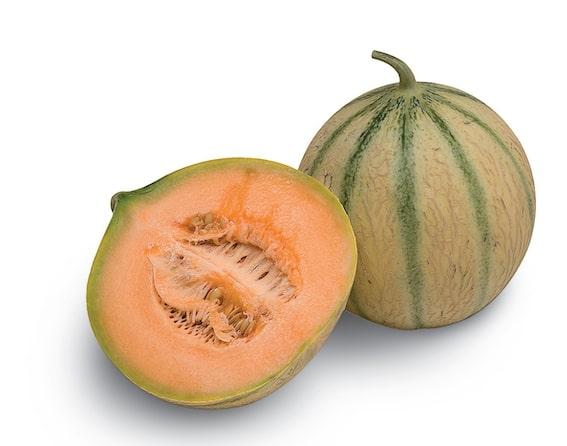 04 437 Melon Gelato