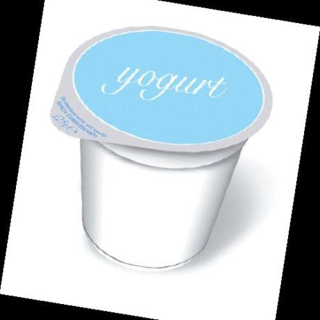 04 513 Yogurt Gelatob